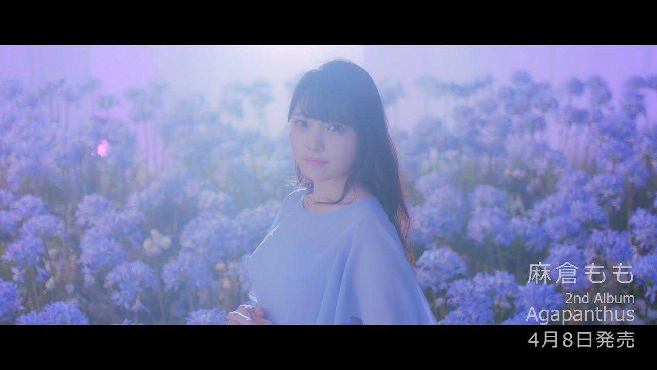 麻倉もも 『Agapanthus』Music Video(short ver.)